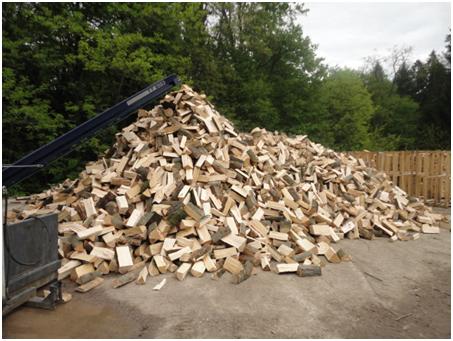 bukova drva 3