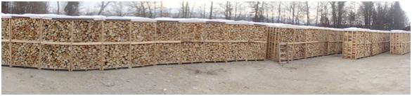 bukova drva 4